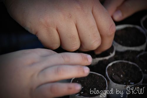 Blog - Tom and Caleb's Hands