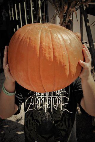C Pumpkin 4x6 Colorized