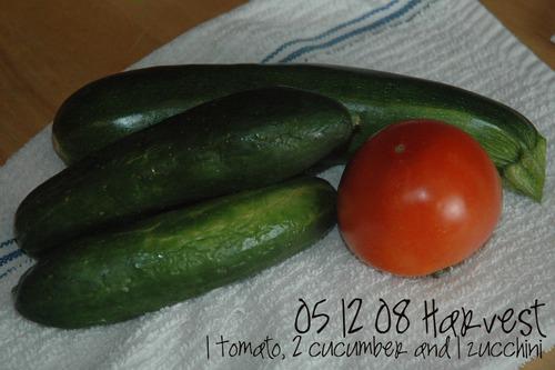 05_12_08_harvest